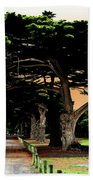 Fig Tree Lane Beach Towel