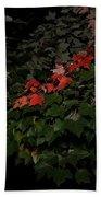 First Fall Colors At Night Beach Towel