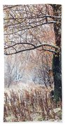 First Snow. Old Tree Beach Towel