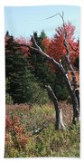 Flames Of Autumn Beach Towel
