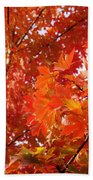 Flaming Maples Beach Towel