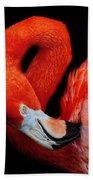 Flamingo Preening Beach Towel