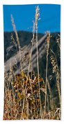 Flatiron Beauty Beach Towel