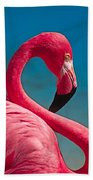 Flexible Flamingo Beach Towel