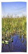 Florida Everglades 5 Beach Towel