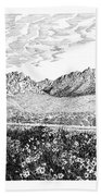 Florida Mountains And Poppies Beach Towel by Jack Pumphrey