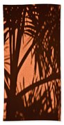 Florida Palm Shadow Beach Towel