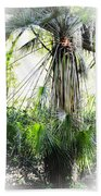 Florida Palms Beach Towel