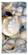 Florida Shells Beach Towel