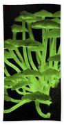 Fluorescent Fungus Beach Towel