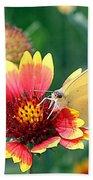 Flower Butterfly Beach Towel