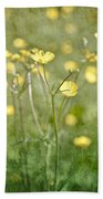 Flower Of A Buttercup In A Sea Of Yellow Flowers Beach Towel
