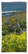 Flowers Along The Shore At La Jolla California No.0203 Beach Towel