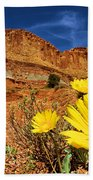 Flowers And Buttes Beach Towel