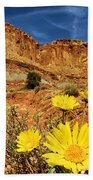 Flowers In The Capitol Beach Towel