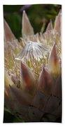 Flowers Of New Zealand 3 Beach Towel