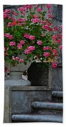 Flowers On The Steps Beach Towel