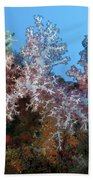 Fluffy Brown, Pink And Red Beach Towel