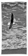 Fly By Beach Sheet