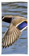 Flying Duck Beach Towel