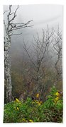 Foggy Day On The Blueridge Beach Towel