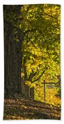 Foliage At The Cemetery Beach Towel