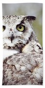 Followed Owl Beach Towel