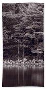 Forest At Jordan Pond Acadia Bw Beach Towel