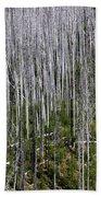 Forest Fire Sticks-2 Beach Towel