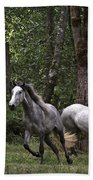 Forest Mares Beach Towel