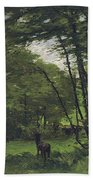Forest Of Fontainebleau Beach Towel