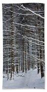Forest Of Marburg In Winter Beach Towel