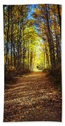 Forest Path In Autumn Beach Towel