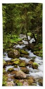 Forest Stream In Tatra Mountains Beach Towel