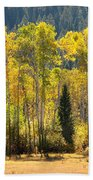 Forested Light Beach Towel