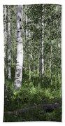 Forever Aspen Trees Beach Towel