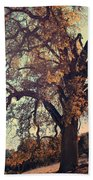 Forevermore Beach Towel