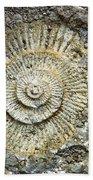 Fossil Geology Beach Towel