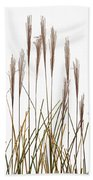 Fountain Grass In White Beach Towel by Steve Gadomski