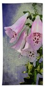 Fox Glove Blue Grunge Beach Towel by Bill Cannon
