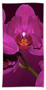 Framed Orchids Beach Towel
