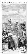 France: Grape Harvest, 1854 Beach Sheet
