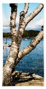 Frenchman Bay Beach Towel