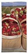 Fresh Picked Strawberries Beach Towel