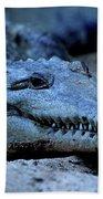 Freshwater Crocodile Beach Towel