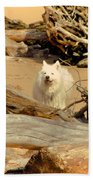 Friend Along The Way Beach Towel