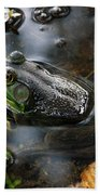 Frog In The Millpond Beach Towel