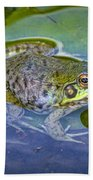 Frog Resting On A Lily Pad Beach Towel