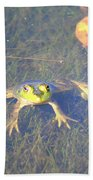 Froggie Sitting In The Water Beach Towel