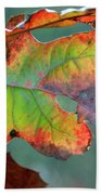 From Greeen To Rust Beach Towel